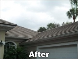 Shingled roof cleaning after