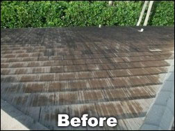 Shingled-roof before cleaning