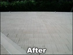 Shingled-roof after cleaning